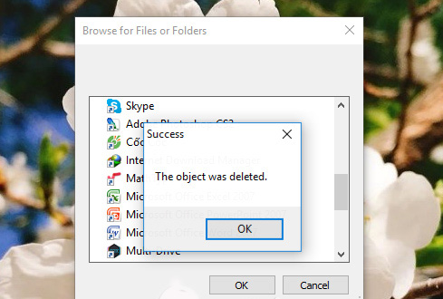 you have successfully deleted the file